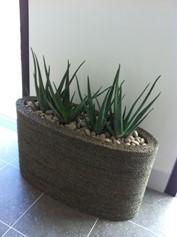 large planter.jpg